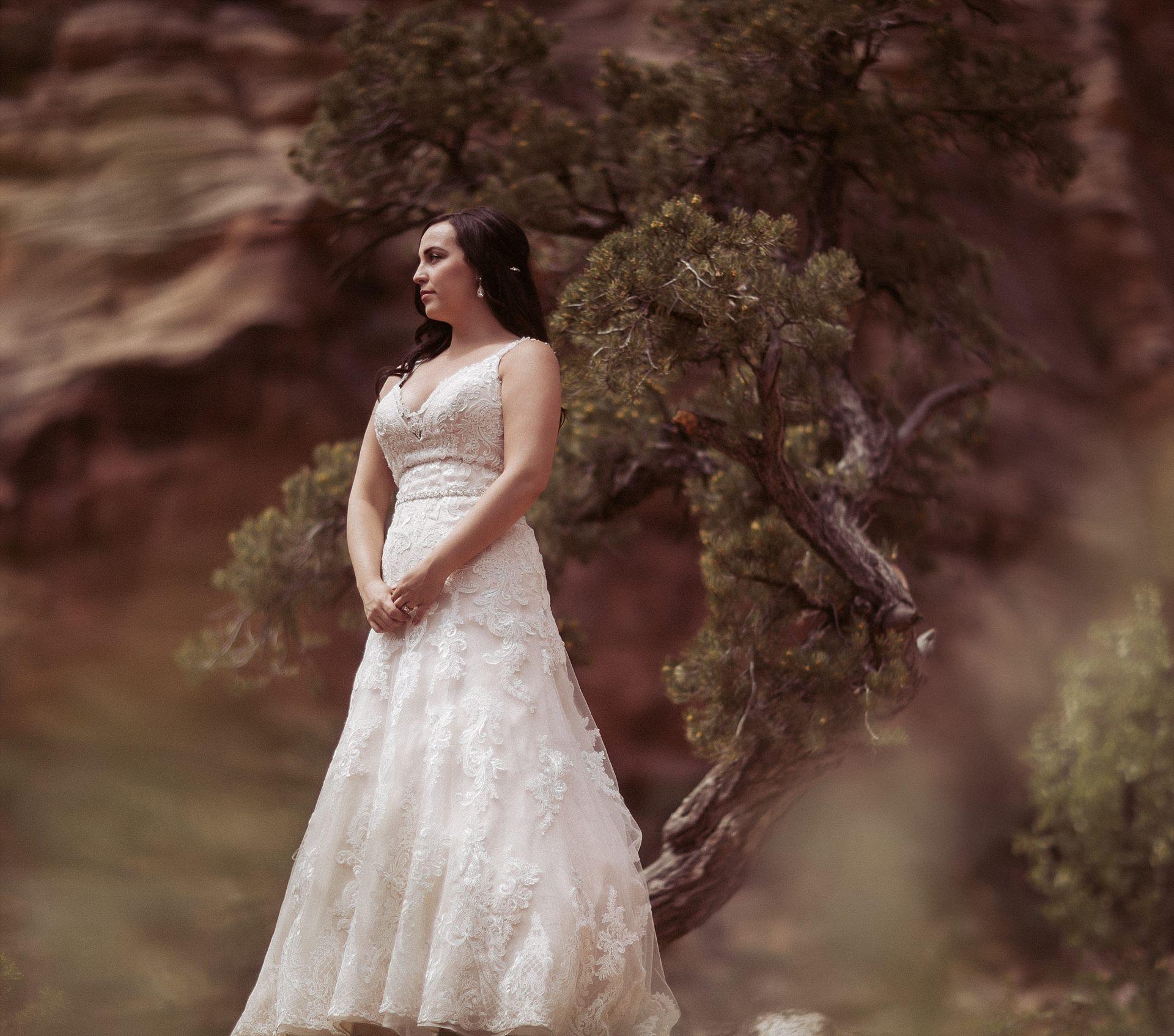 Hicks-Zion-National-Park-Wedding-0004.jpg