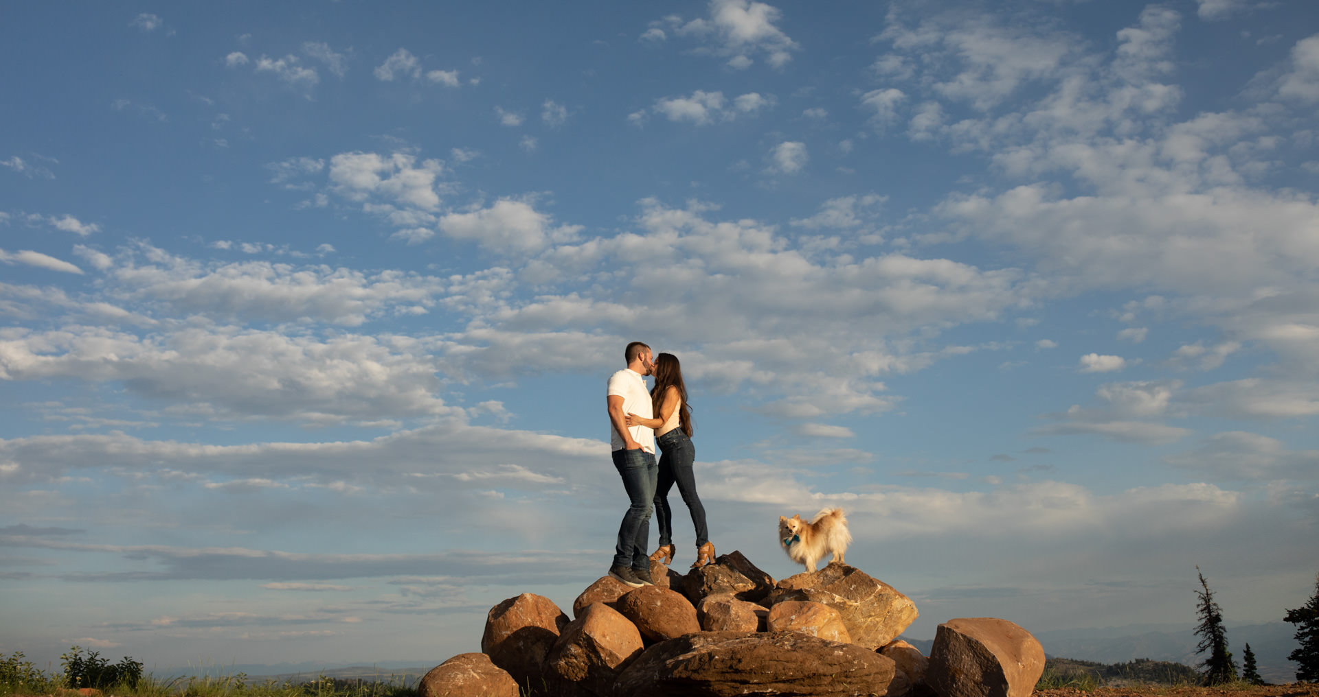 Dog Portraits Engagements Weddings Snow Basin Faces Photography