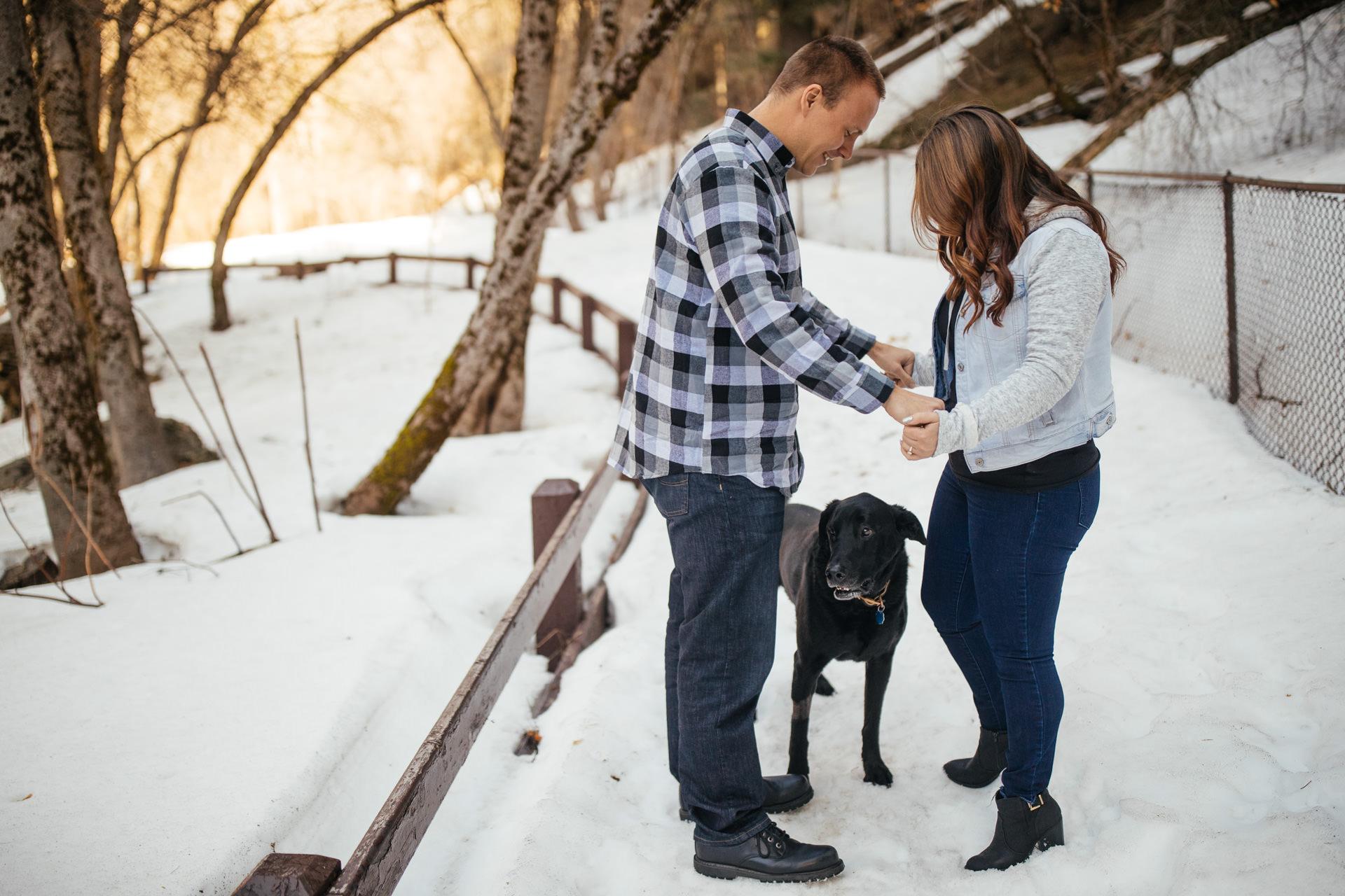 Wedding Dog Engagement Photos Faces Photography