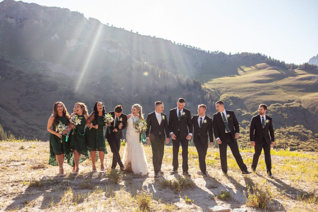 Wedding Party in Albion Basin